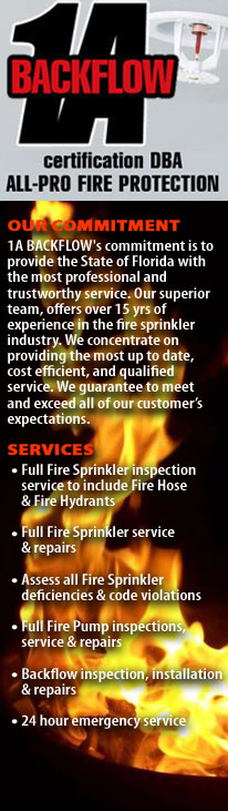Fire Inspection & Repairs